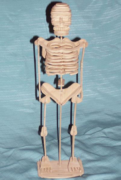Chertezh podelki «Skelet»